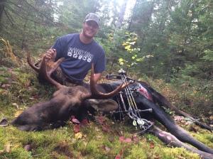 b moose