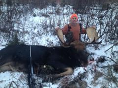colin moose 15