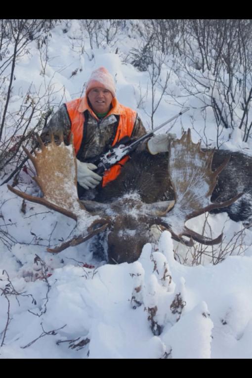 colin-moose